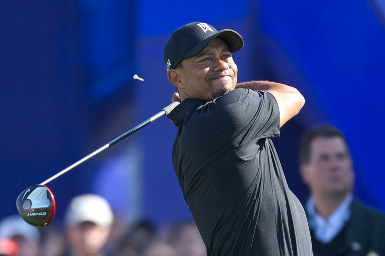 Tiger Woods(Michael Weinstein photo)