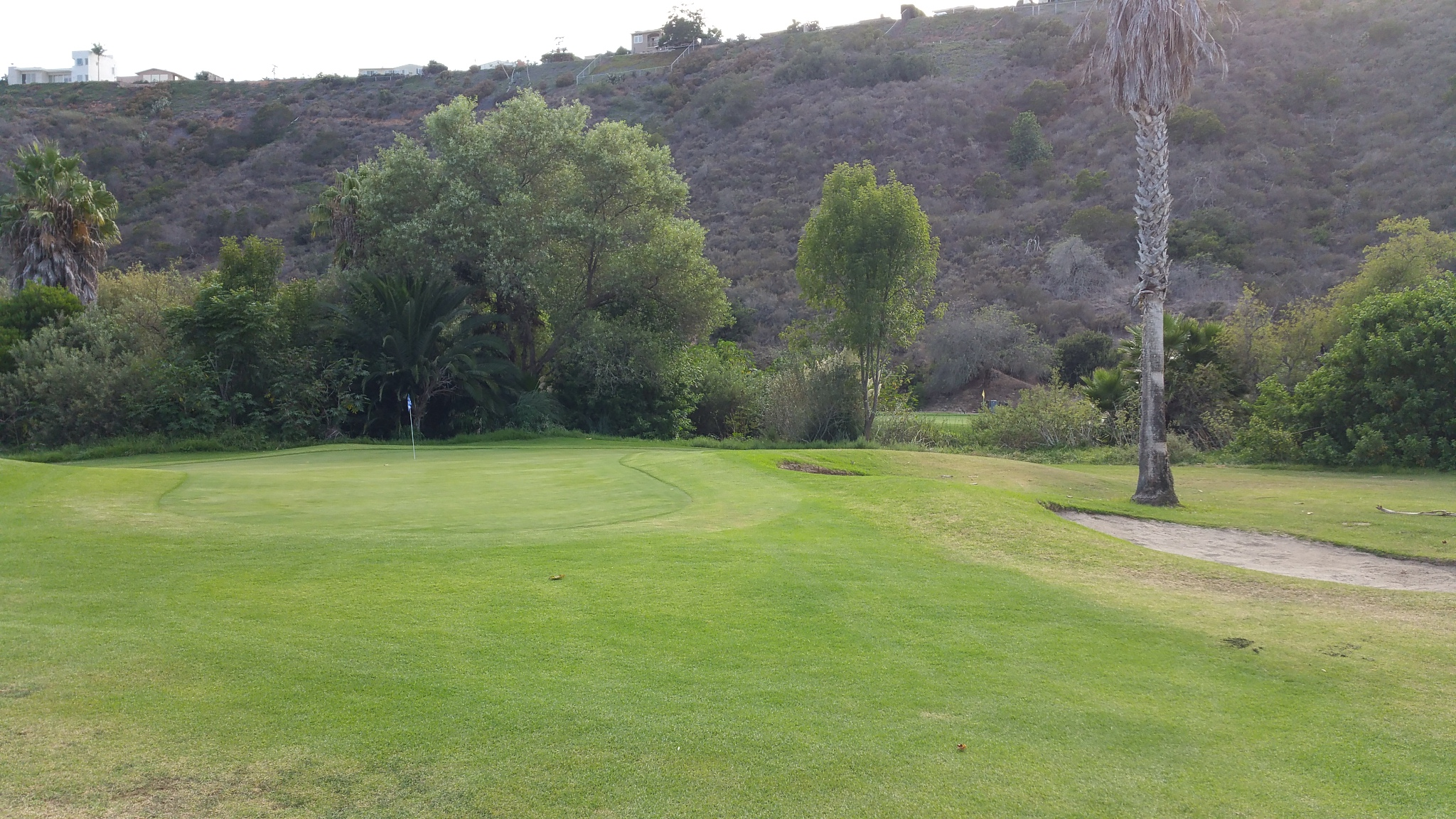 Smooth, undulating, postage stamp-size greens are one of the great features at Tecolote Canyon Golf Club in San Diego.