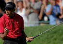 Tiger Woods: No. 7 on the Forbes list, No. 1 in many hearts